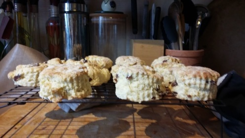 20160212_successful scones